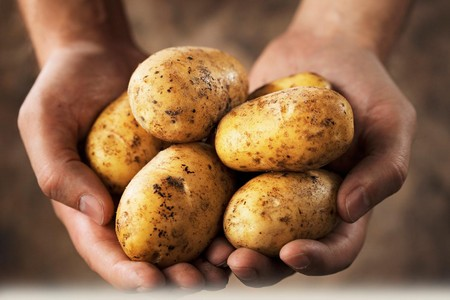 Рецепт приготовления картофельного сока для лечения миомы
